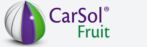 Carsol
